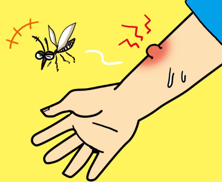 蚊 虫除け 子供 赤ちゃん 国産