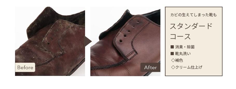 靴リネットの革靴のカビが取れた写真