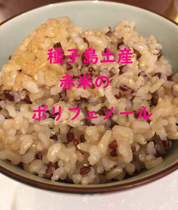 種子島の赤米