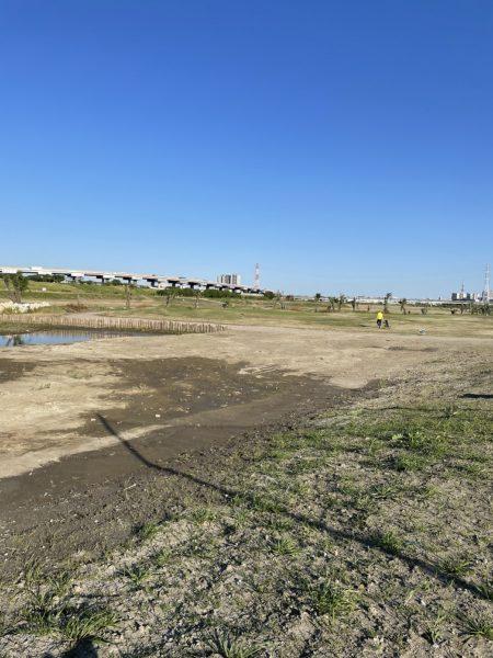 新東京都民ゴルフ場コースの浸水跡