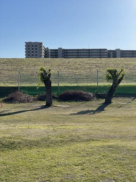 新東京都民ゴルフ場台風で浸水ラインが残る堤防
